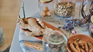 apa saja tanaman herbal yang dapat mencegah covid-19
